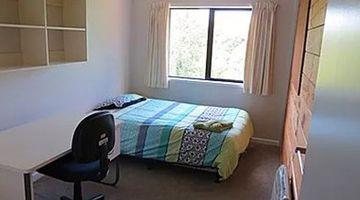 Campus Apartments Auckland
